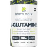 Bodylogix Micronized L Glutamine