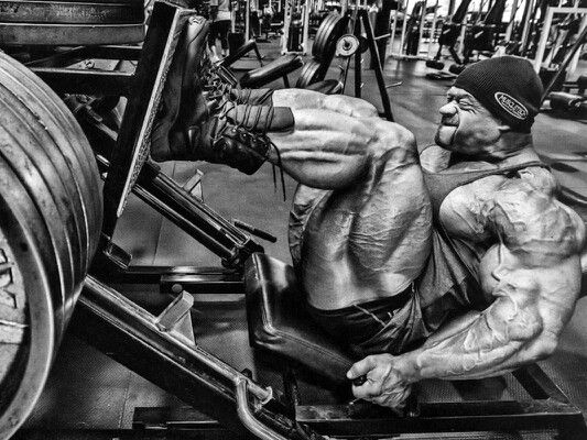 The Squat Vs The Leg Press Which Exercise Reigns Supreme