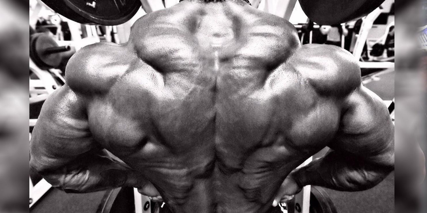 Back Training 101: Build Your Back – Fitness Volt Bodybuilding ...