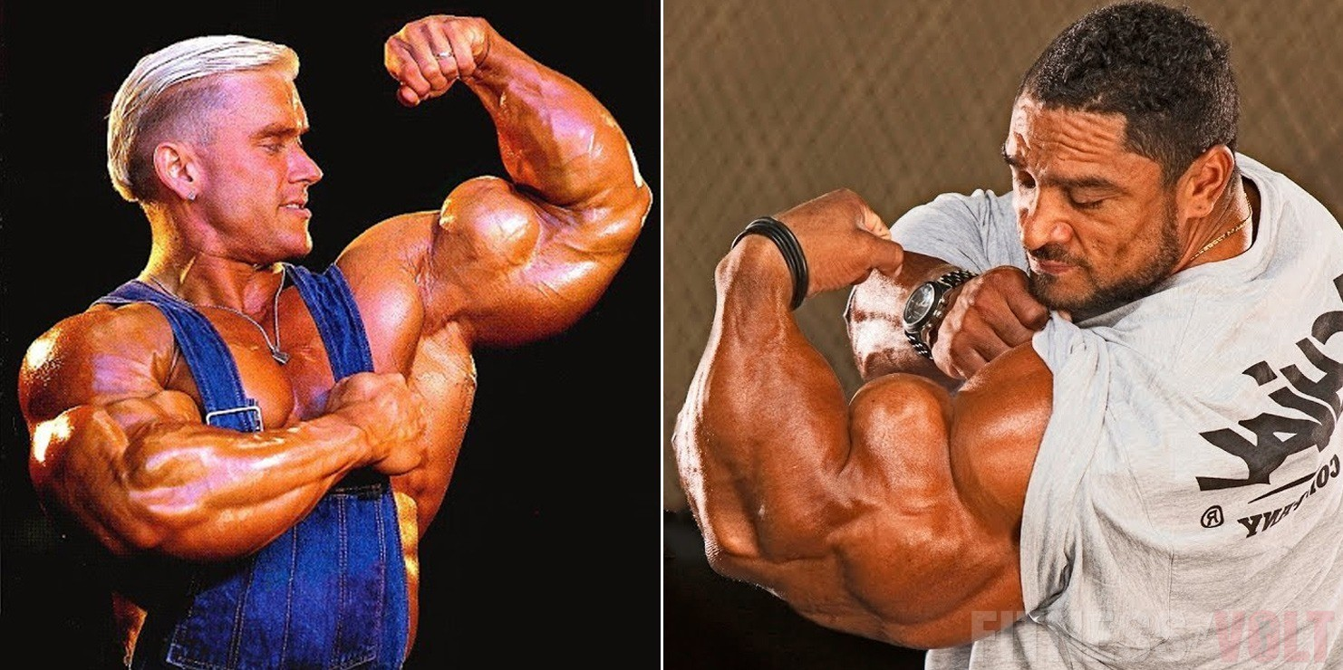 Best Diet Pills >> Killer Biceps: Top 10 Best Biceps Exercises For Size! – Fitness Volt