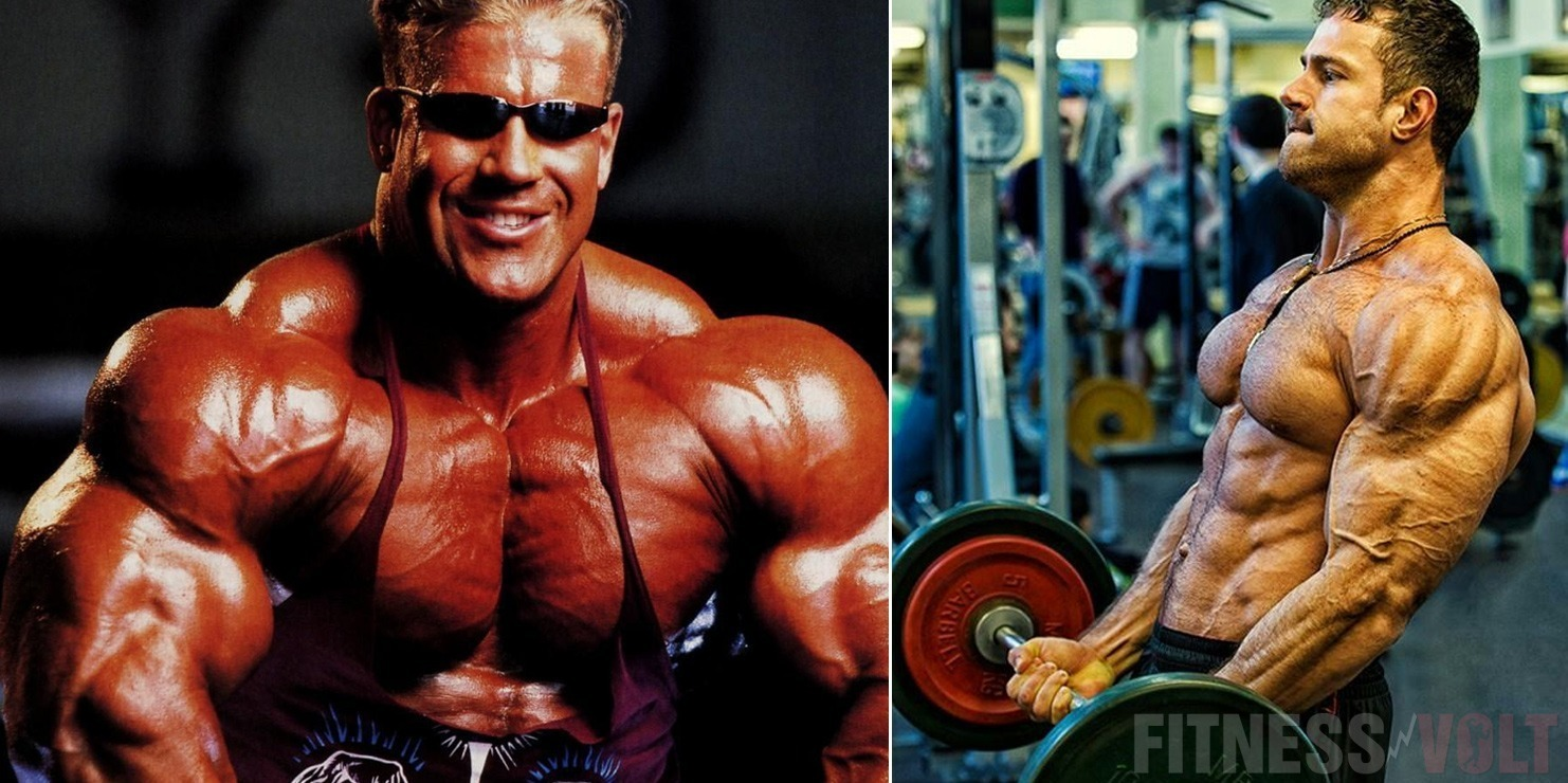 Muscle Science: The Role Of The Mitochondria In Fat Loss And Muscle-Building – Fitness Volt