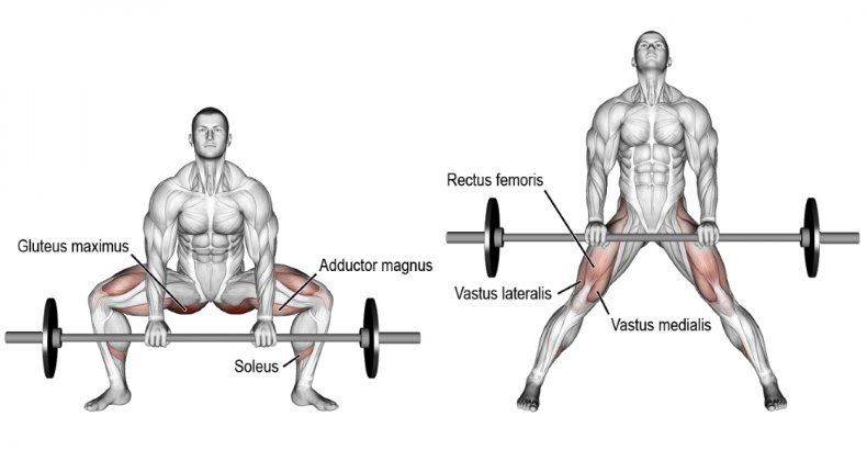 Traditional Vs Sumo Deadlift Which Type Is Best For You Fitness Volt
