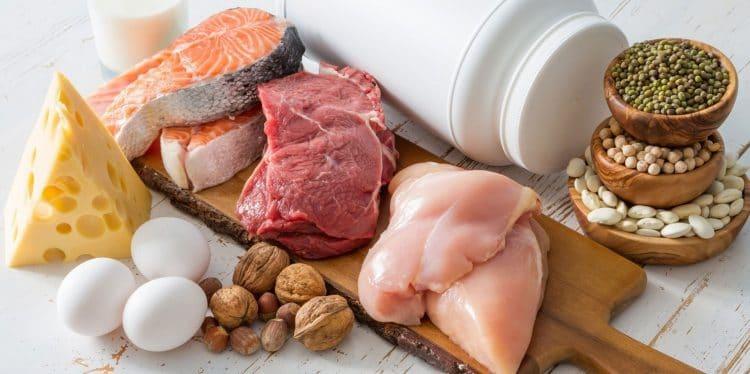 Best Protein Source