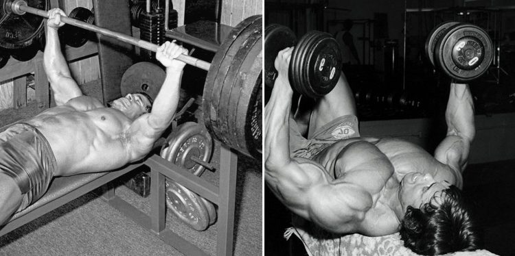 The Bench Press Vs The Dumbbell Fly