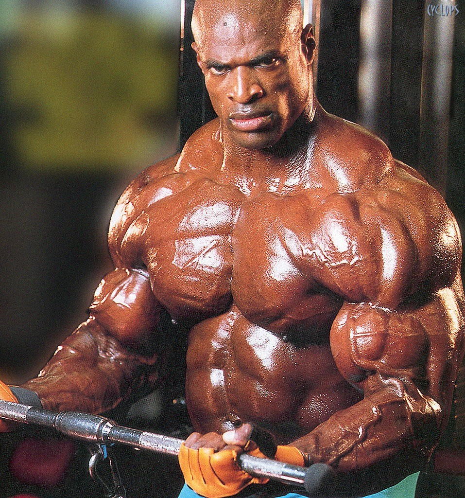 Best Top 8 Arms In Bodybuilding History – Page 6 of 8