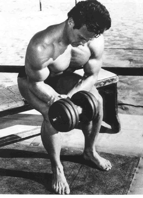 "Steve Reeves ""Hercules"" – Fitness Volt Bodybuilding"