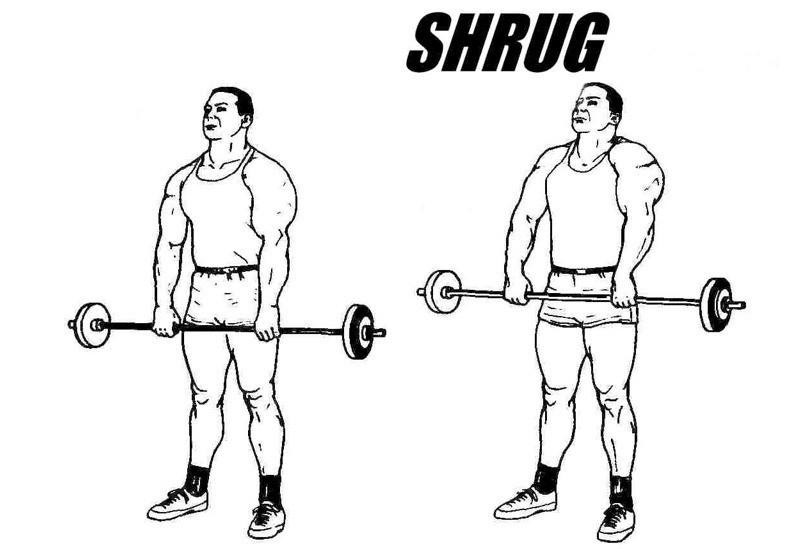 Shrugs