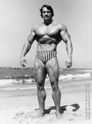 Arnold Schwarzenegger The Austrian Oak Schwarzy Arnie