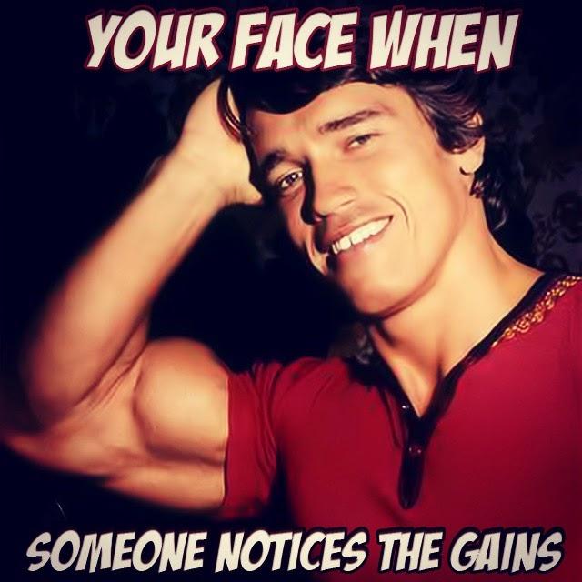 Arnold Schwarzenegger Gains Mem