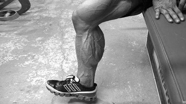 calf-muscle