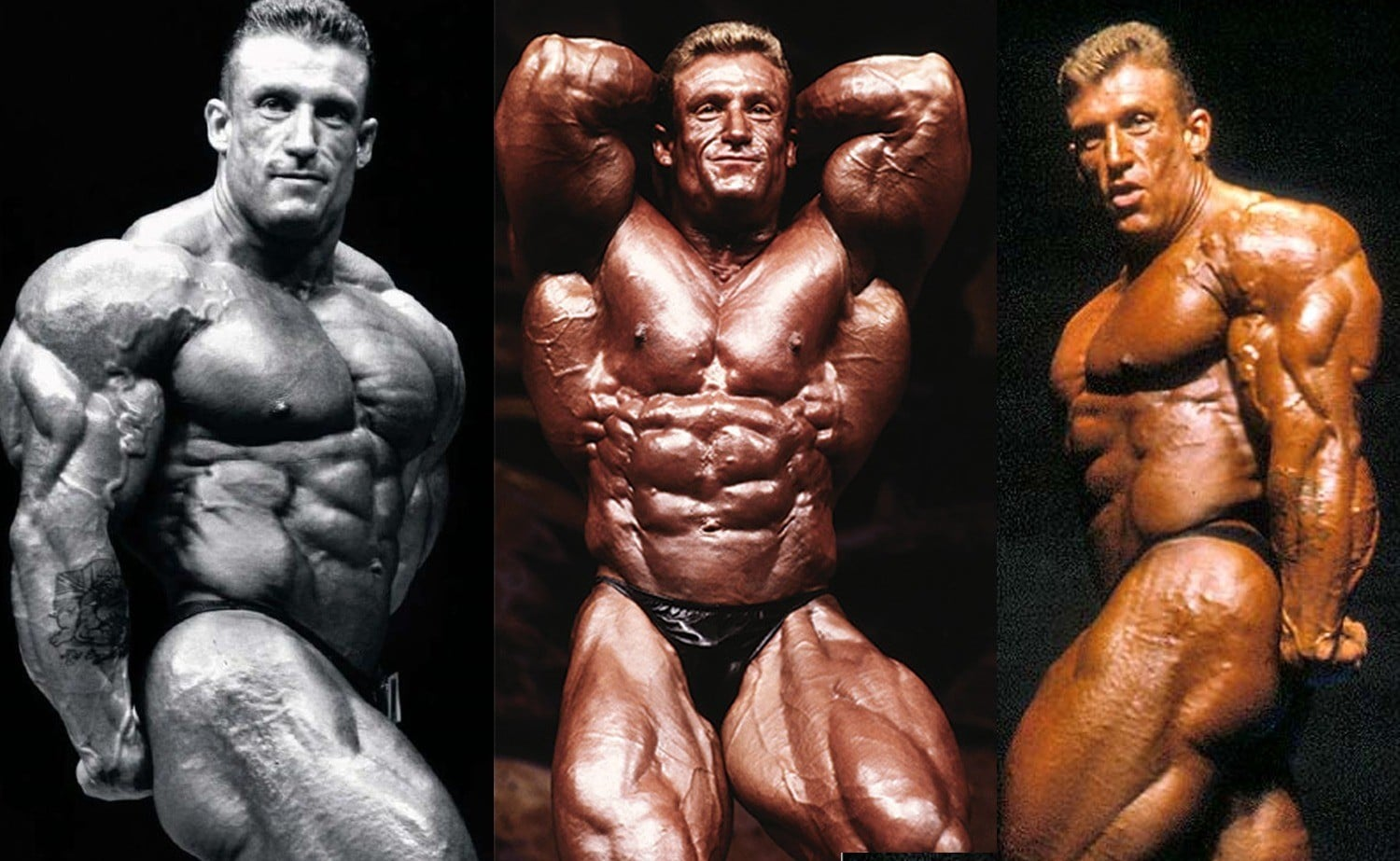 bodybuilder steroid transformation