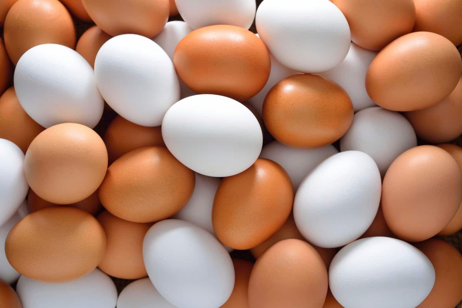 Whole Eggs vs Egg Whites: For GAINZ? – Fitness Volt