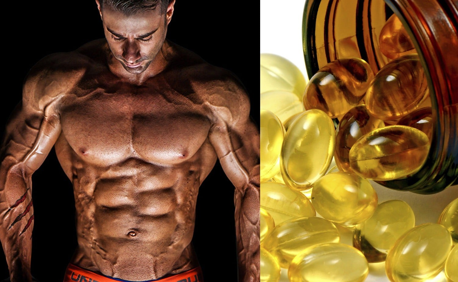Fish oil turns fat storage to fat burning cells fitness for Fish oil dosage bodybuilding