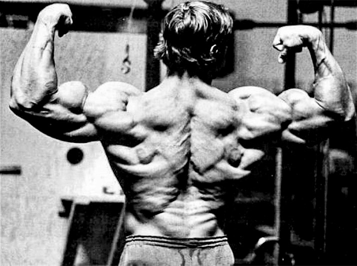 arnold-schwarzeneggers-back-workout_06
