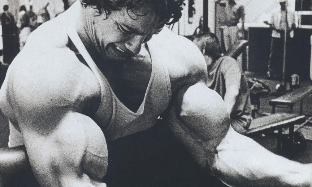 arnold_no-pain-no-gain