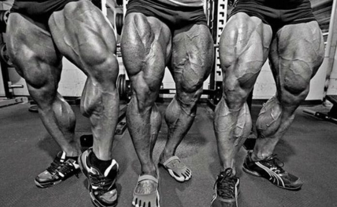 How To Get Bigger Calves? – Fitness Volt