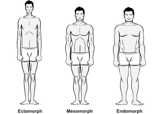 Understand your body type.