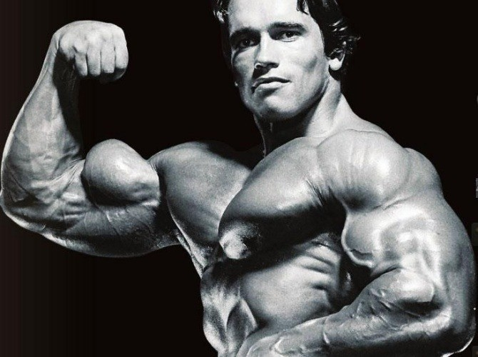 Bicep is perhaps the most attention-grabbing muscle of the arm speaking from a strictly visual aspect.