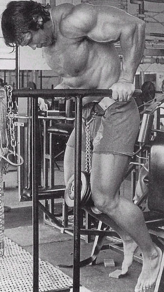 arnold-weighted-dips