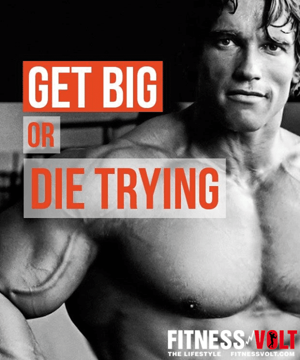 Get Big Or Die Trying Fitness Volt 💪 #Success #Bodybuilding #quotes # Motivation #workout #Arnold