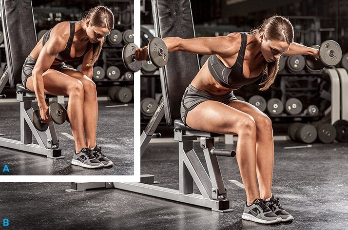 Bent Over Seated Delt Raise