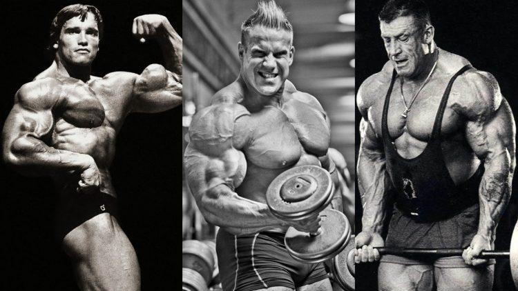 Best Biceps In History