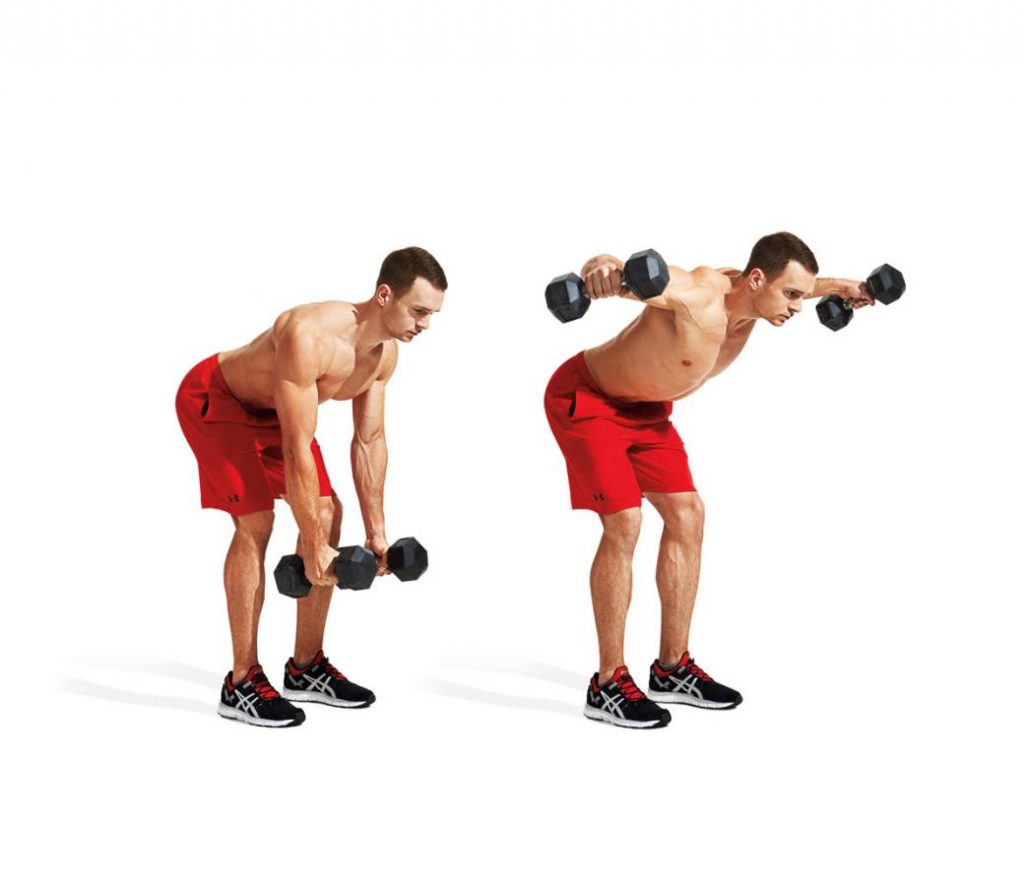 Bent Dumbbell Raise