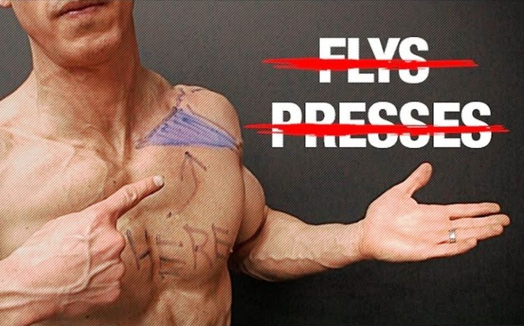 How to Build Your Upper Chest