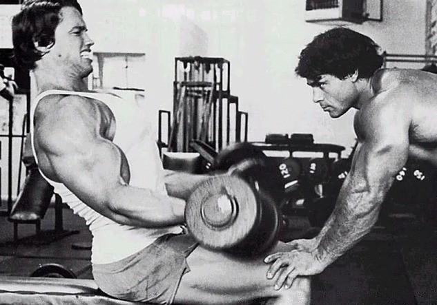 arnold-workout
