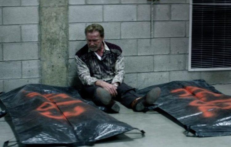 Arnold Schwarzenegger Aftermath