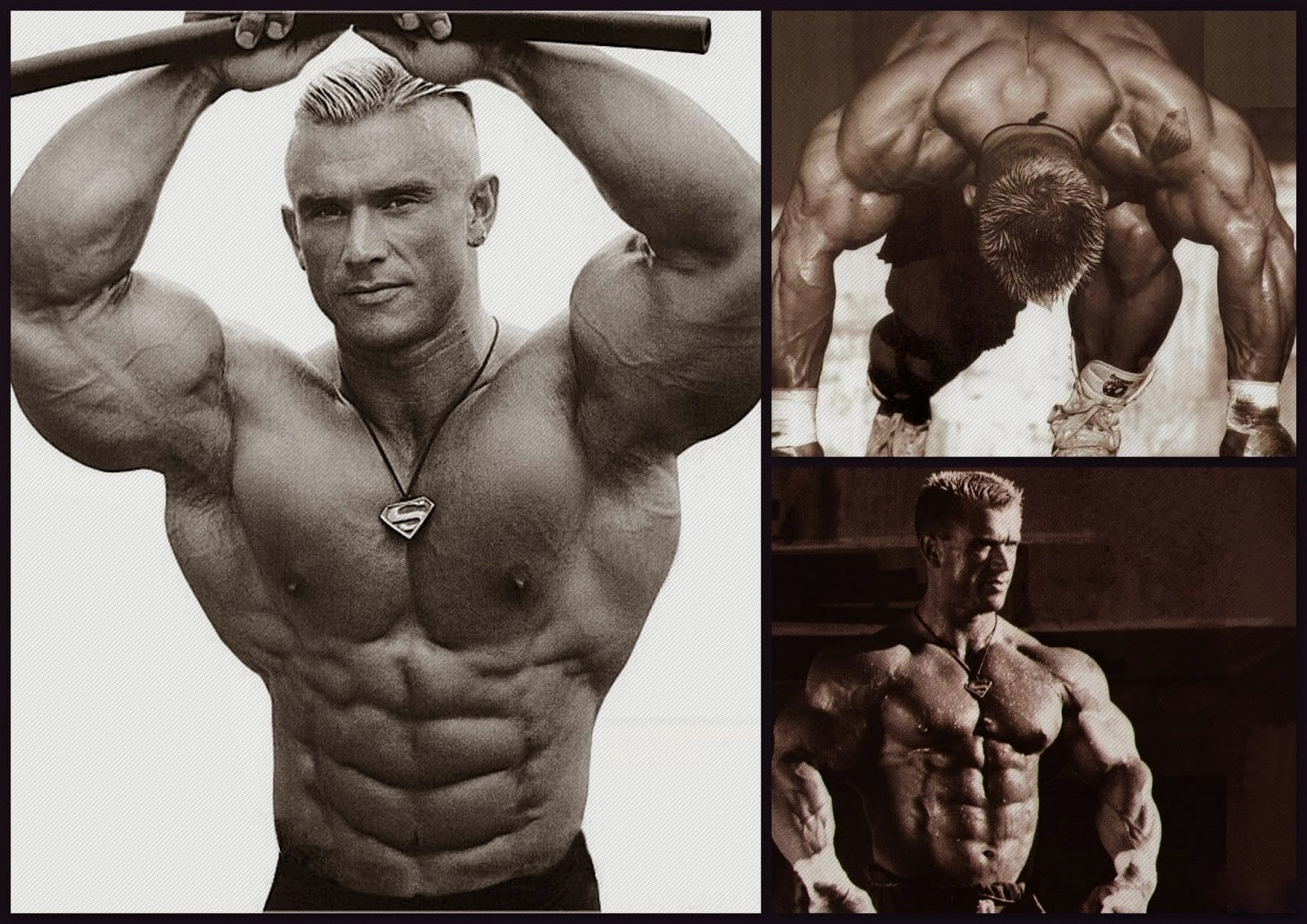 top 10 best steroid cycles