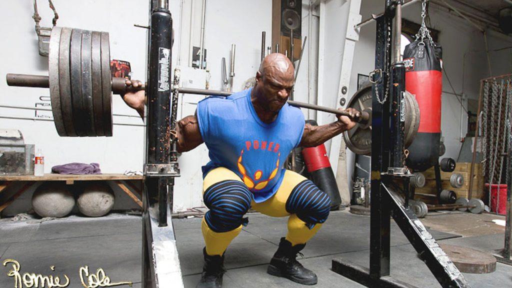 ronnie coleman squat racks