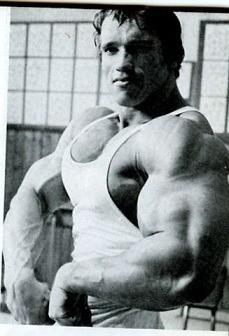 Arnold Schwarzenegger pumped arms