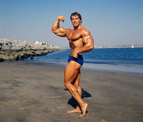 Arnold Schwarzenegger : Height | Weight | Arms | Chest ...
