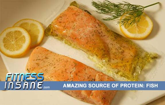 Fish-Protein-Top