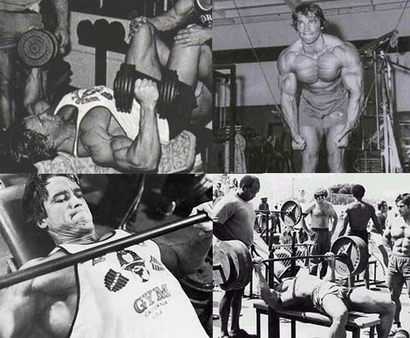 arnold-training-chest