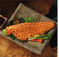 fish-protein-meal