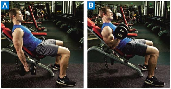 Incline-Hammer-Curls