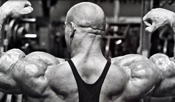 shoulder-training-101-shoulder