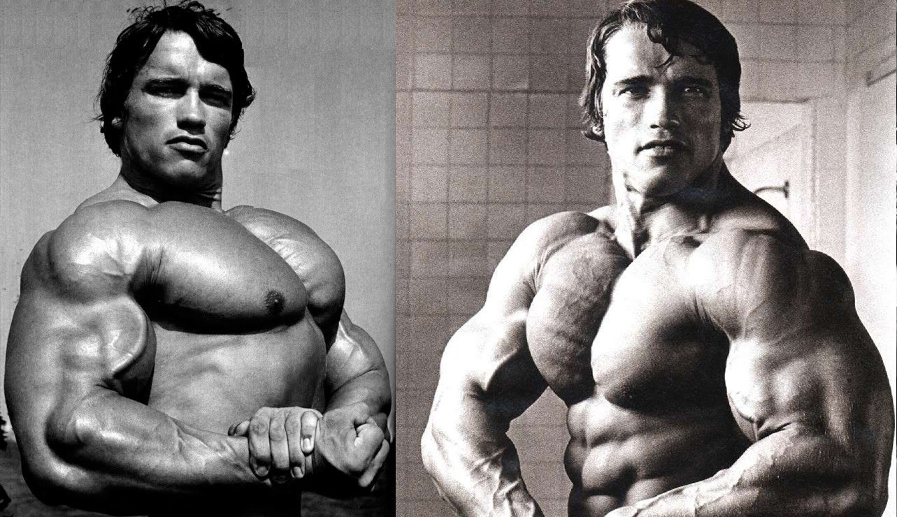 Of The Workout Flushing And Pumping His Back Chest All At Once Gave Arnold An Experience That He Called Indescribable As If Could Feel