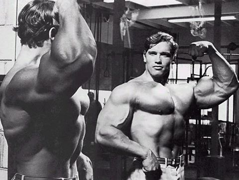 Arnold in Mirror