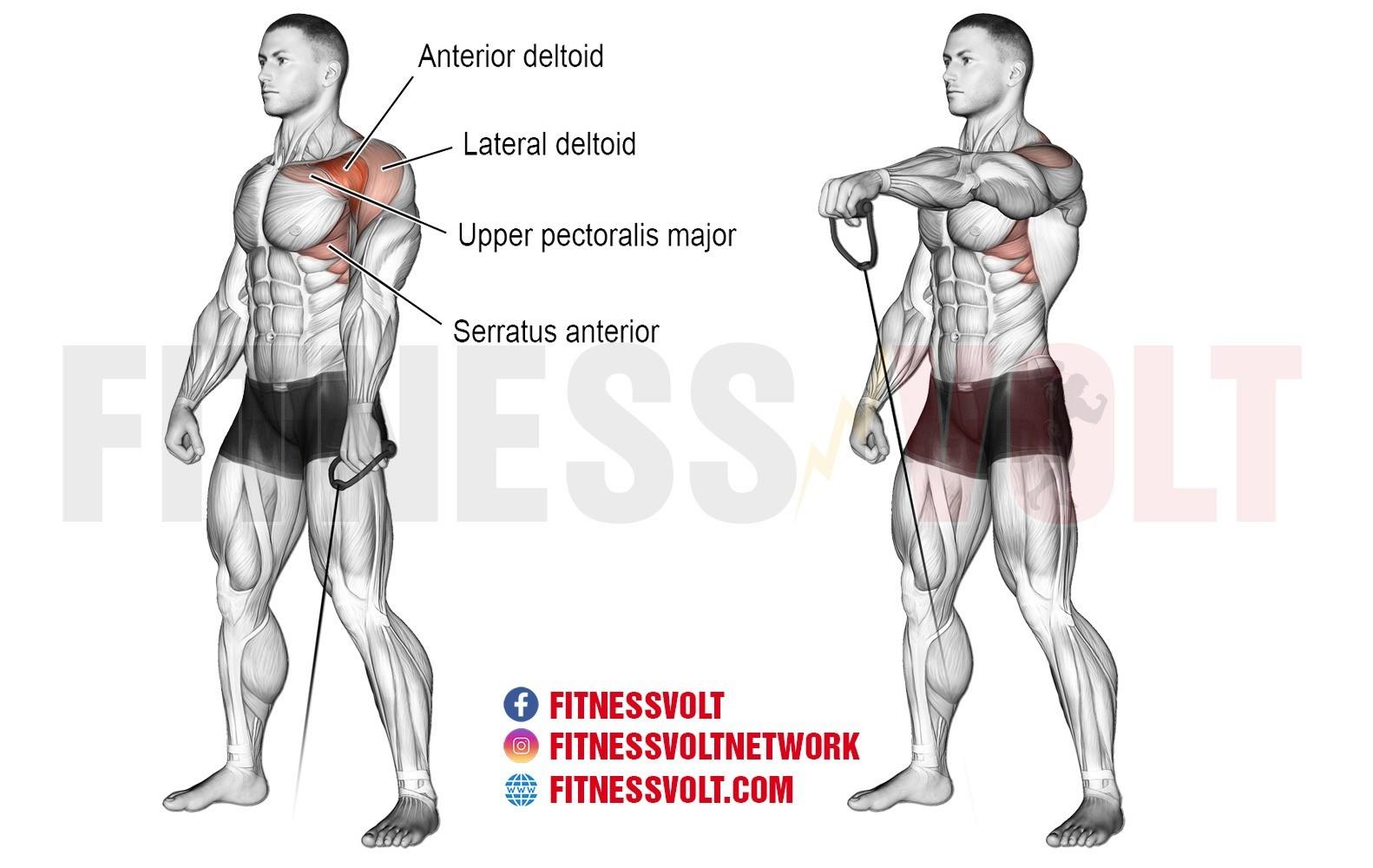 cable onearm front raise � fitness volt bodybuilding