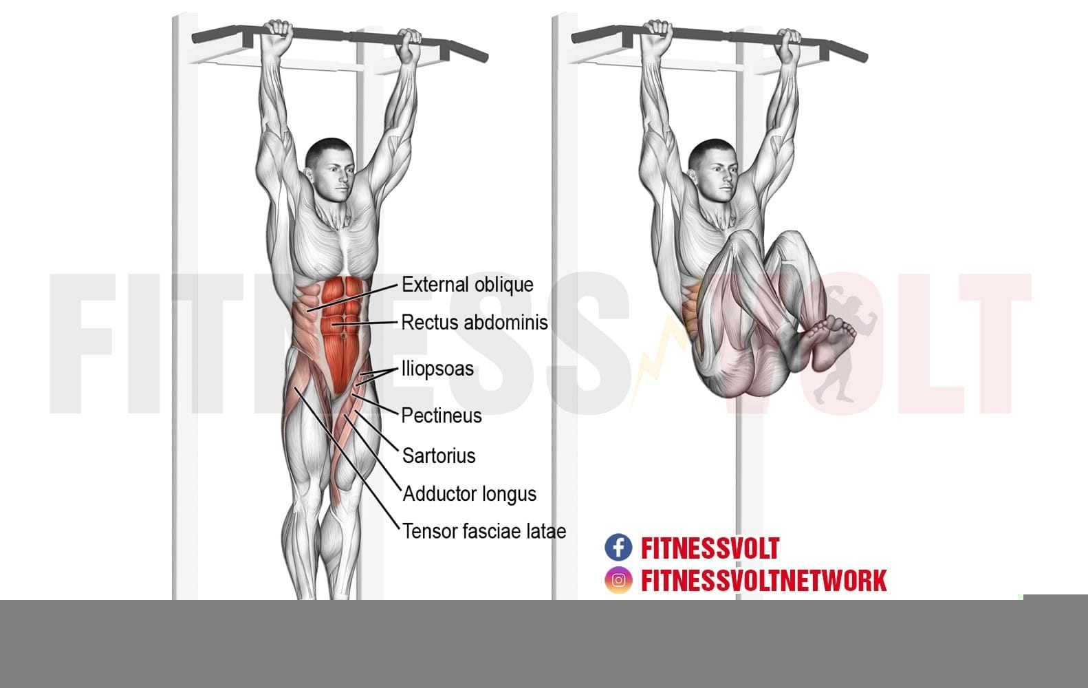 Hanging Leg And Hip Raise – Fitness Volt
