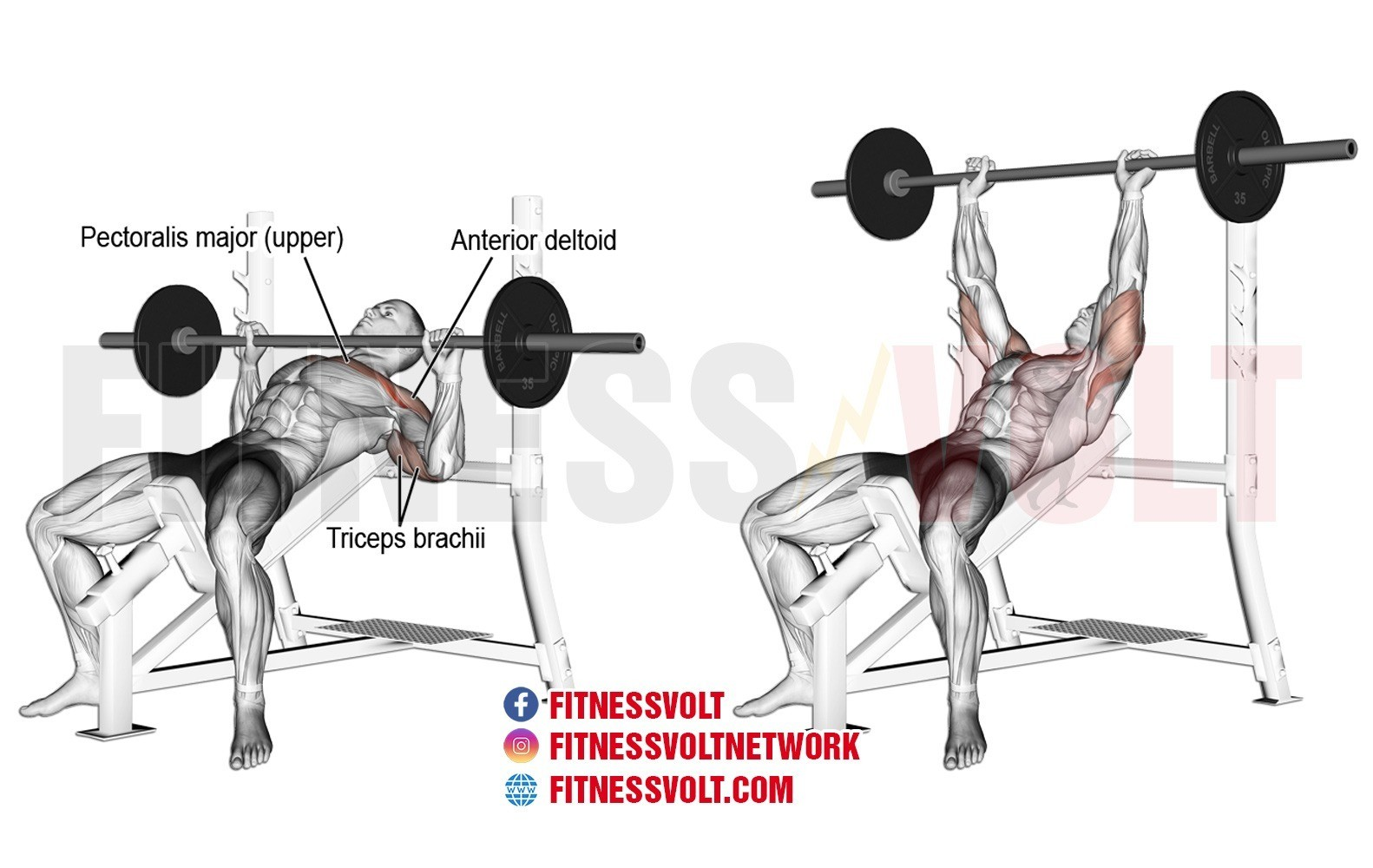 Incline Barbell Bench Press Upper Chest Fitness Volt