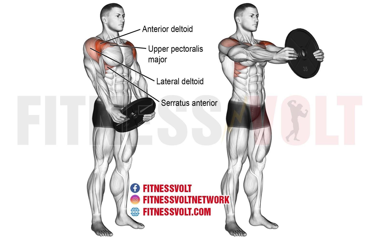 Plate Front Raise – Fitness Volt Bodybuilding & Fitness News