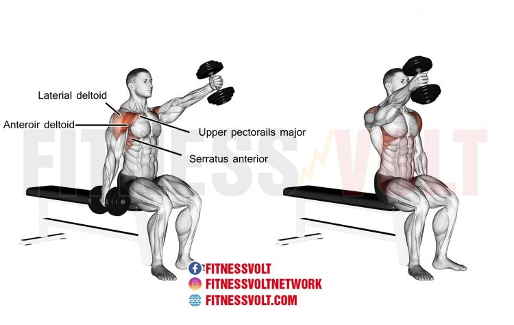 Image result for Wall Sit and Alternating One-Arm Dumbbell Front Raise