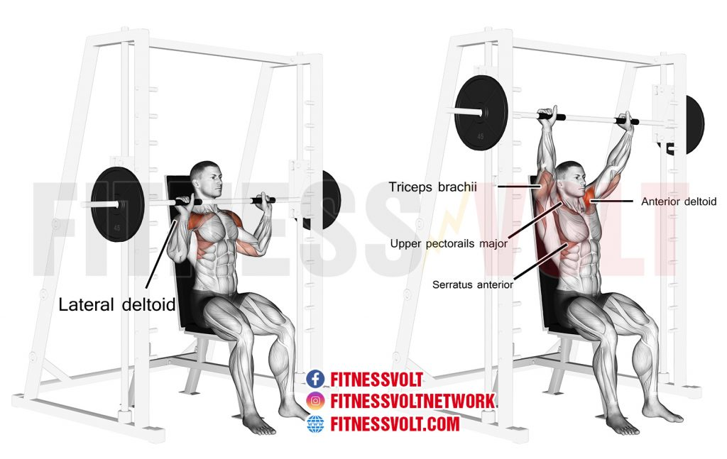Seated Smith machine overhead press