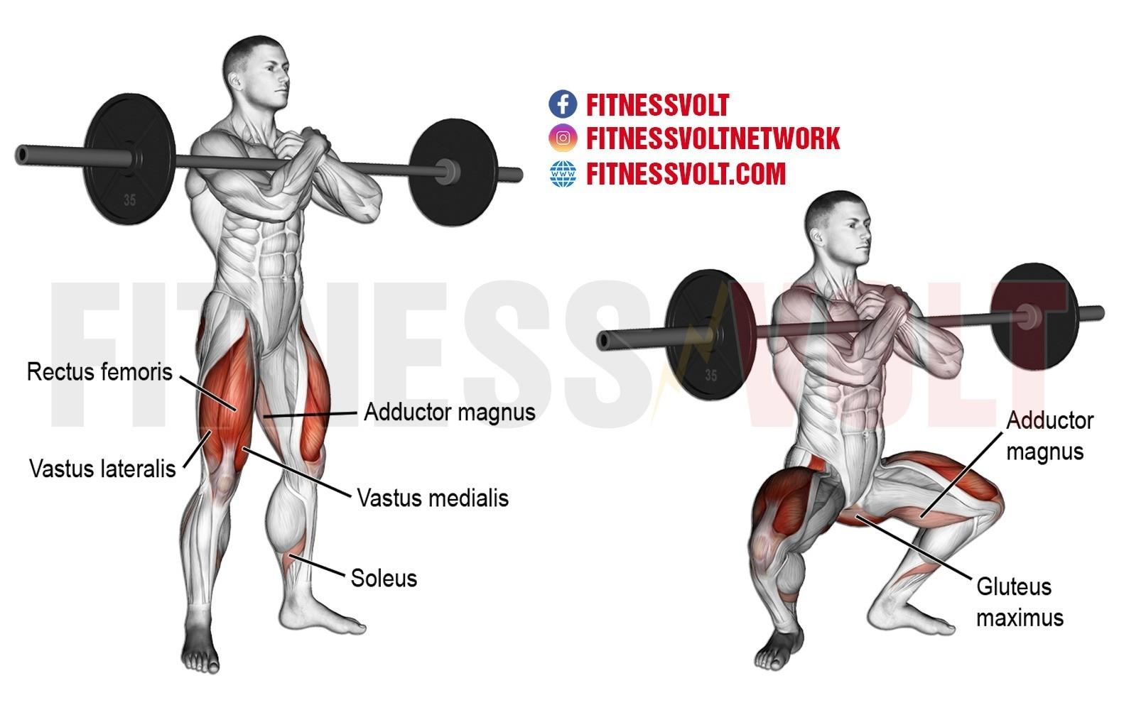 Zercher Squat Legs Fitness Volt