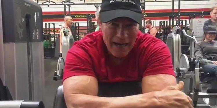 Arnold Schwarzenegger Back in Gym