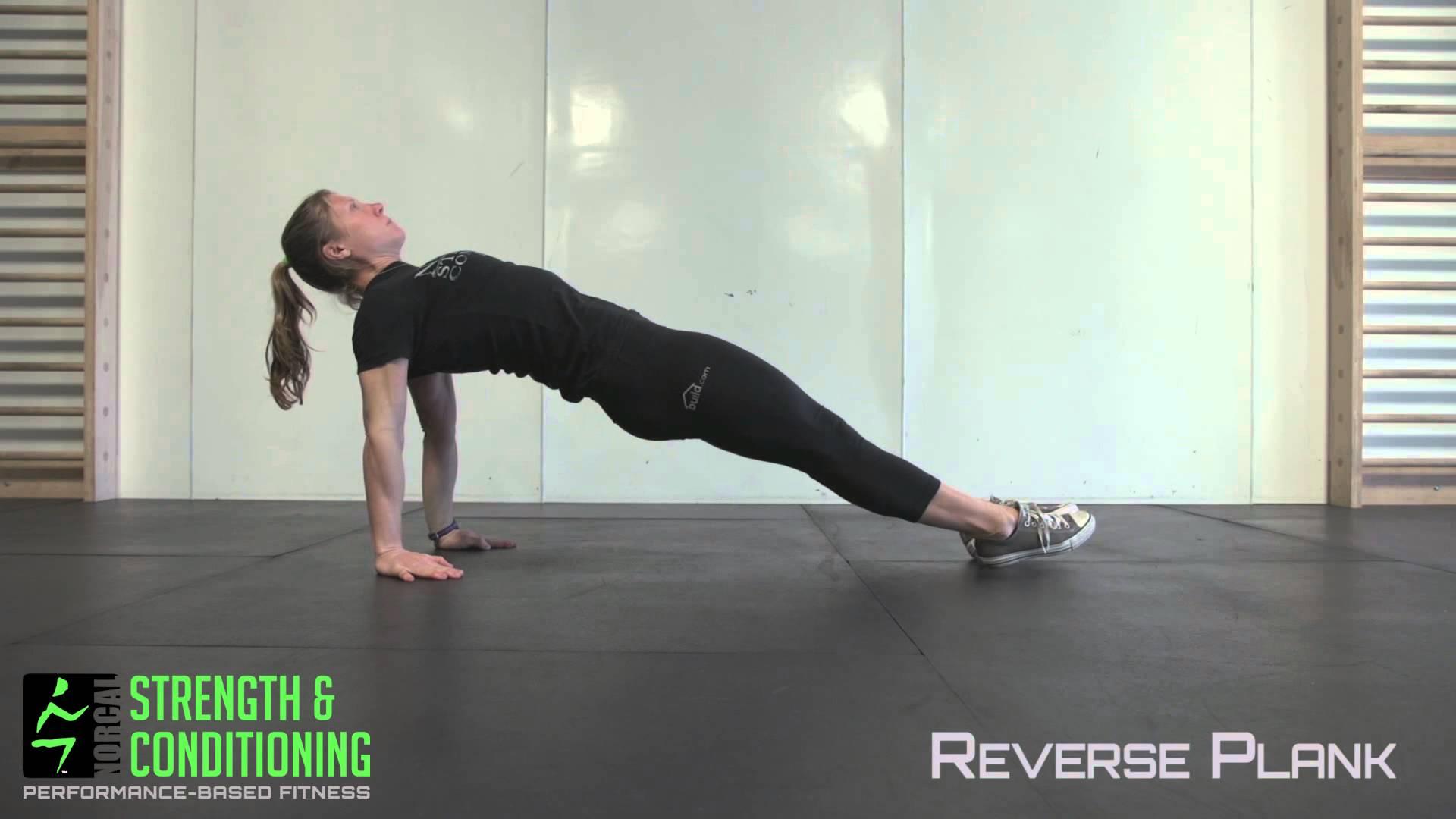 High Reverse Plank (Glutes)